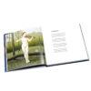 Dreamscapes Gerrit Luidinga, P10-P11