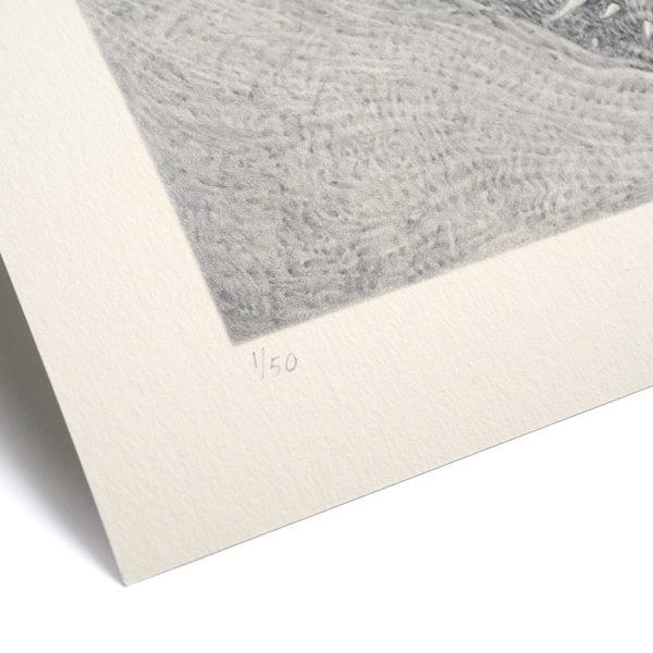 Detail photo of Skull left-corner
